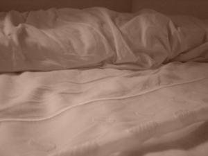 Allergiker Kissenbezüge